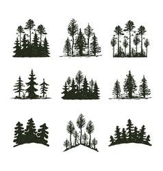 tree outdoor travel black silhouette coniferous vector image