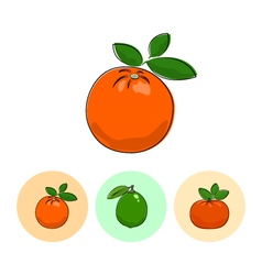 Fruit icons orange lime mandarin vector