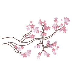 Blooming Sakura Branch2 vector