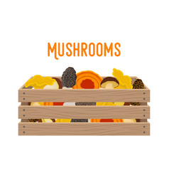 box with mushrooms basket with products vector image