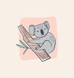 cute baby koala australian animal cartoon doodle vector image