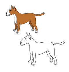 cute cartoon bullterrier isolated on white vector image
