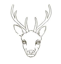 Deer sketch animal vector