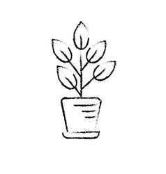 Figure natural plant with leaves inside flowerpot vector