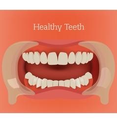 Healthy teeth image vector image