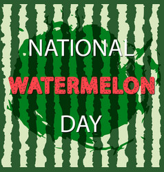 national watermelon day design vector image