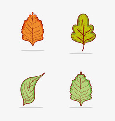 set tropical leaves and autumn leaf vector image