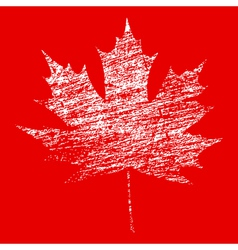White Grunge Maple Leaf vector image