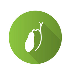 Gallbladder and ducts flat design long shadow vector