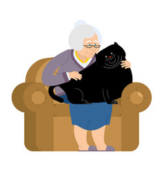 Grandmother and fat cat sitting on chair granny vector