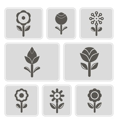 monochrome icons with flowers vector image