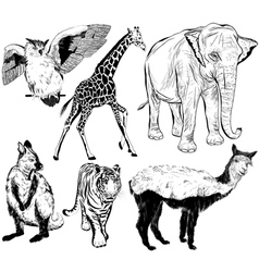 set of hand drawn wild animal vector image vector image