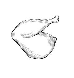 chicken leg coloring book vector image