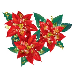 Christmas poinsettia with golden decorations vector