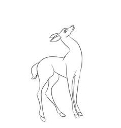 deer line vector image