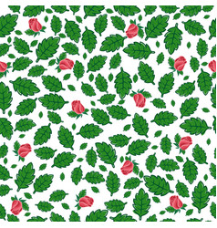 Seamless pattern from leaves and buds of roses vector