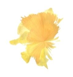 Orange spot flash like watercolor vector
