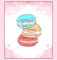 delicate card with colored drawing of macaroon vector image