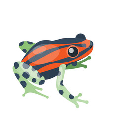 Frog cartoon tropical green red animal cartoon vector