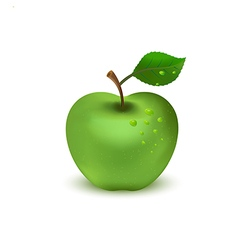 green apple on white background1 01 vector image