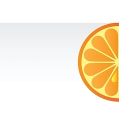 Juicy orange background vector image