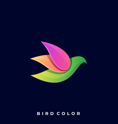 modern bird colorful template vector image