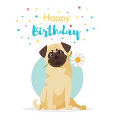 pug with flower greeting card vector image