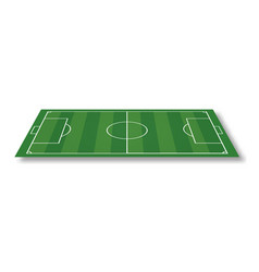 soccer field or football field isolated on white vector image