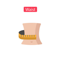 waist flat icons vector image