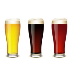 Set of glasses with beer vector image vector image