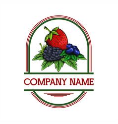 berries badge vector image
