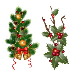 Christmas branches vector image