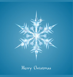 christmas snowflake greeting vector image