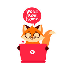 fox sitting with a laptop vector image