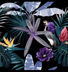 tropical night vintage wild birds pattern vector image