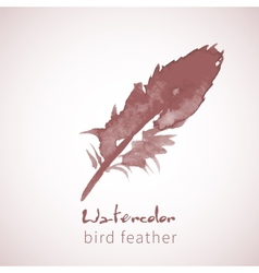 Watercolor design element feather vector