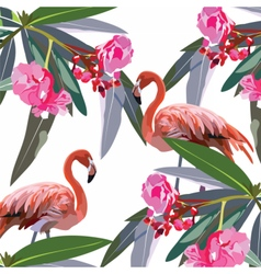 Flamingo birds and tropic flowers vector image