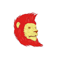 lion head with flowing mane drawing vector image vector image