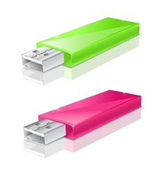 green and pink usb flash drive vector image vector image