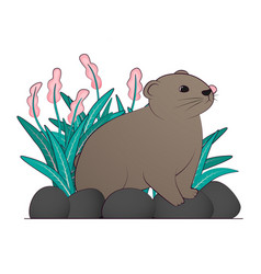A brown lemming vector