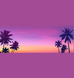 Dark palm trees silhouettes on sunset or sunrise vector