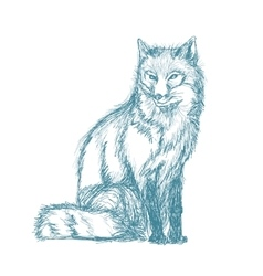 Fox sitting sketch blue vintage vector