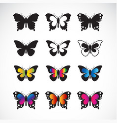 group butterflies design on white background vector image
