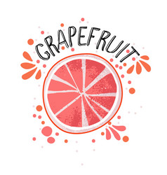hand draw grapefruit half and vector image