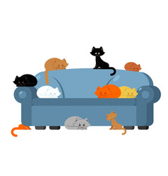 many cats on couch kittens on sofa furniture cat vector image