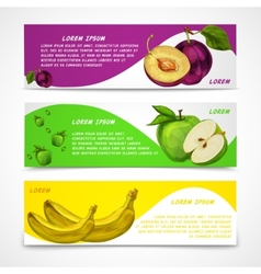 Mixed fruits banners collection vector image
