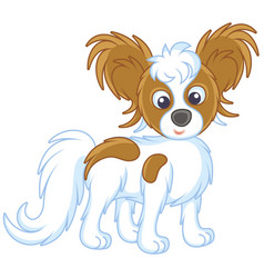 Small funny dog papillon friendly smiling vector