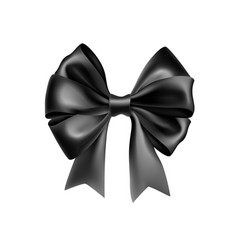 stylish black bow tie from satin material vector image