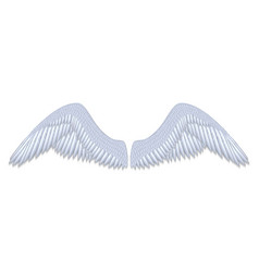 white angel wings vector image