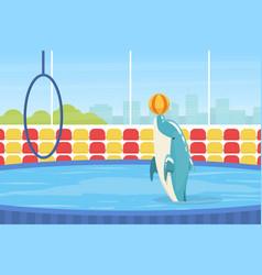dolphin jumping through ring sea animal vector image